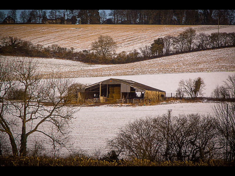 FARM SHED IN WINTER by David Greenwood